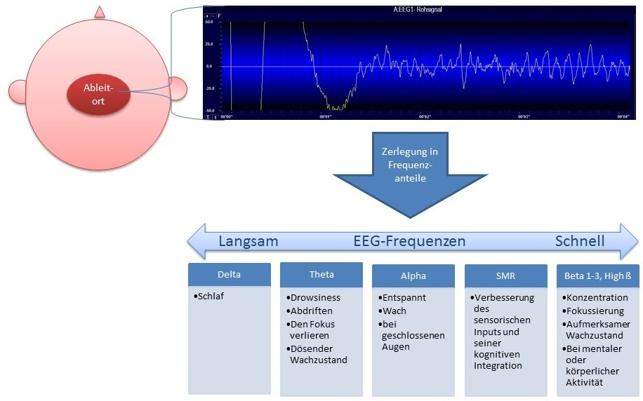 Neurofeedback_Training_EEG_Rhythmen.jpg
